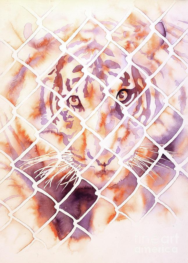 Caged Tiger II by Ryan Fox