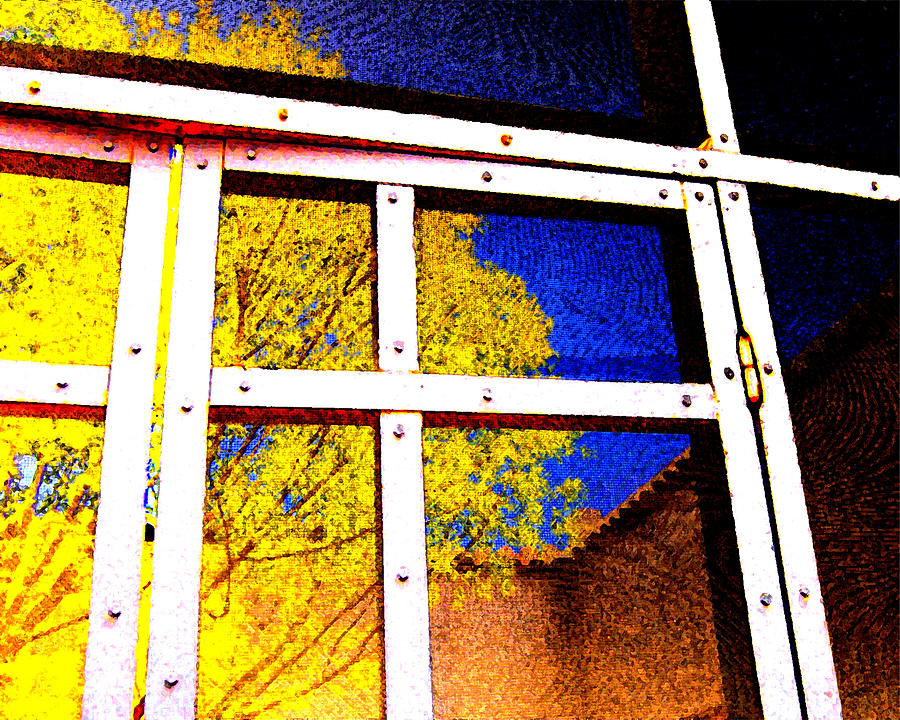 Caged Photograph - Caged Tree by Edward Swearingen