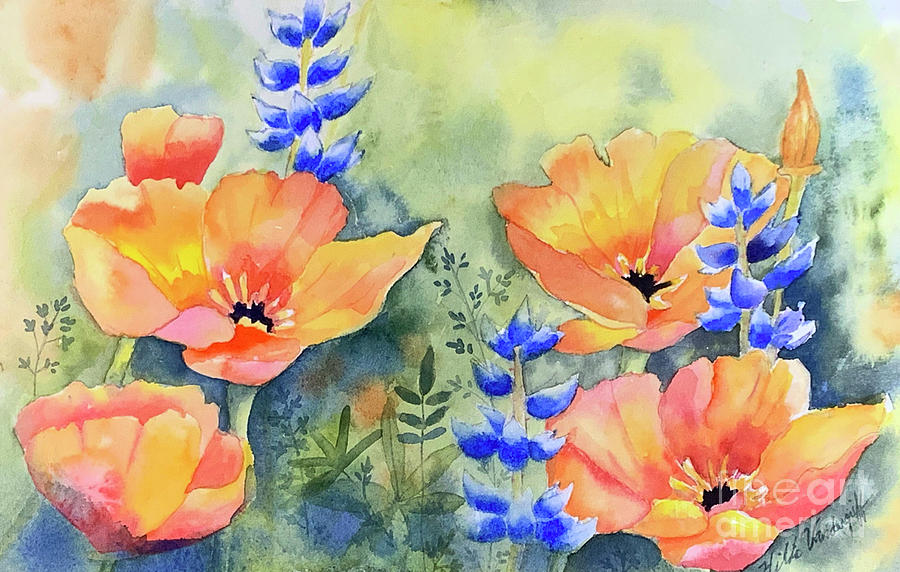 California Poppies Dreaming by Hilda Vandergriff