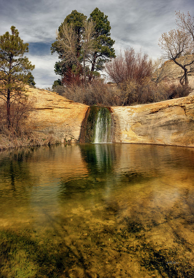 Nature Photograph - Calf Creek Pool by Leland D Howard
