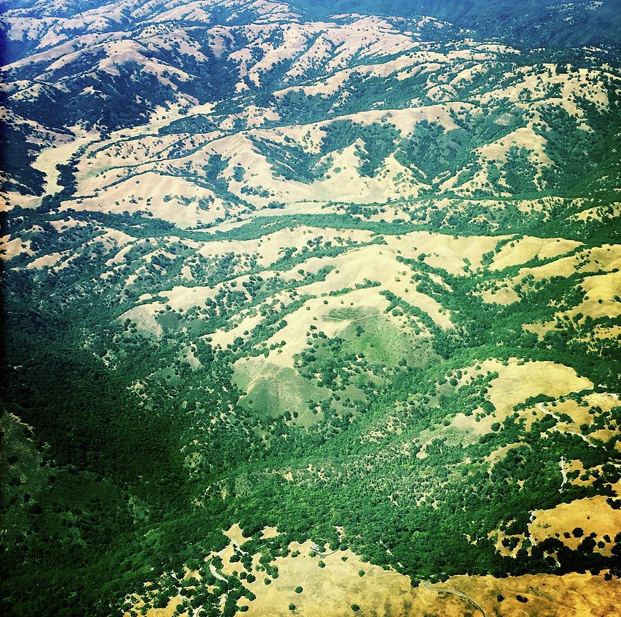 California by Anne Thurston