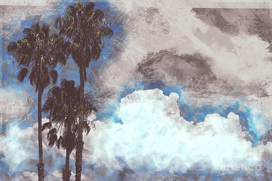 California Dreamin by Matthew Nelson
