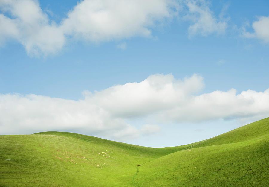 California Hills Photograph by Cindy Loughridge