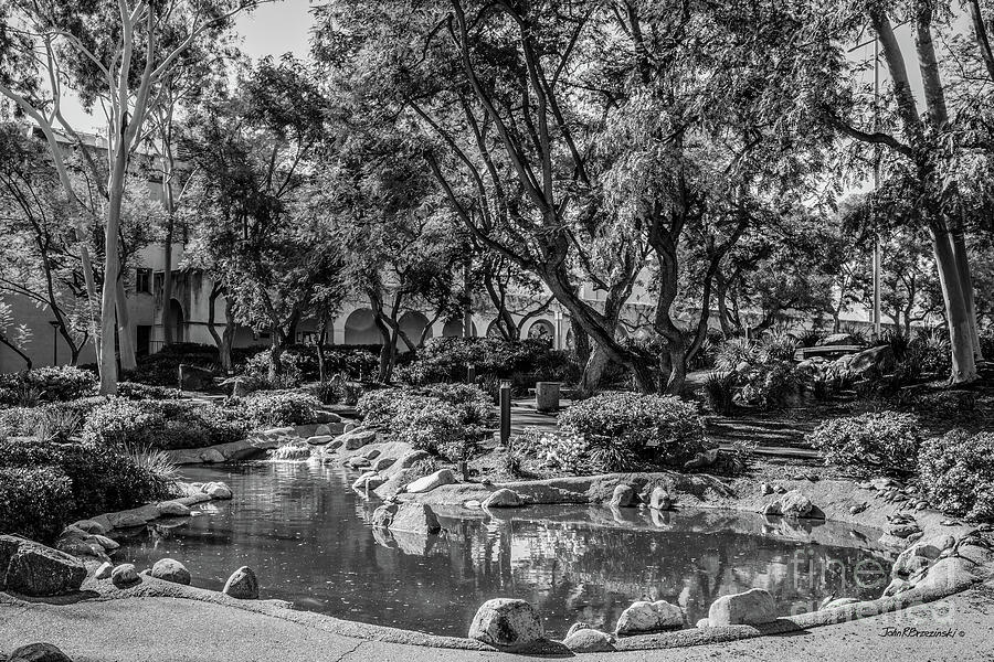 Cal Tech Photograph - California Institute Of Technology Throop Pond by University Icons