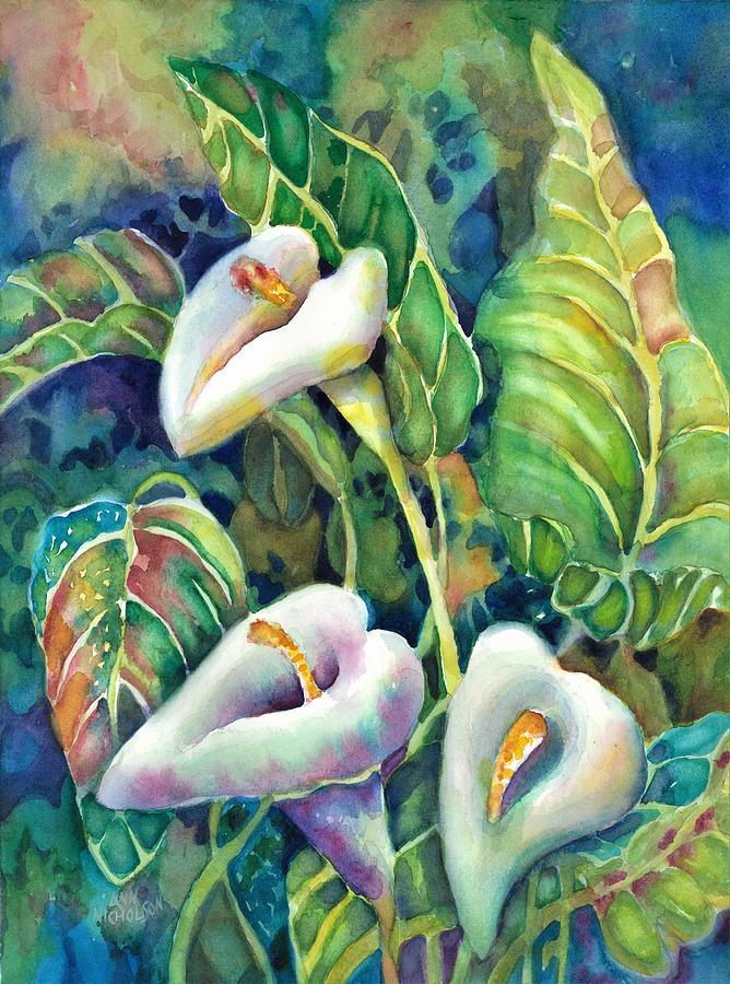 Calla Lillies by Ann Nicholson