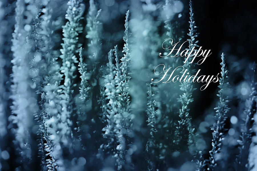 Calluna Happy Holidays In Blue by Johanna Hurmerinta