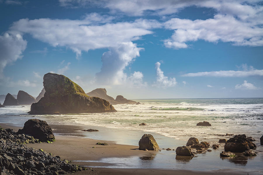 Calm on the Oregon Coast by Janis Knight