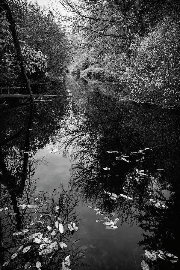 Calm Water Fall by Steven Clark