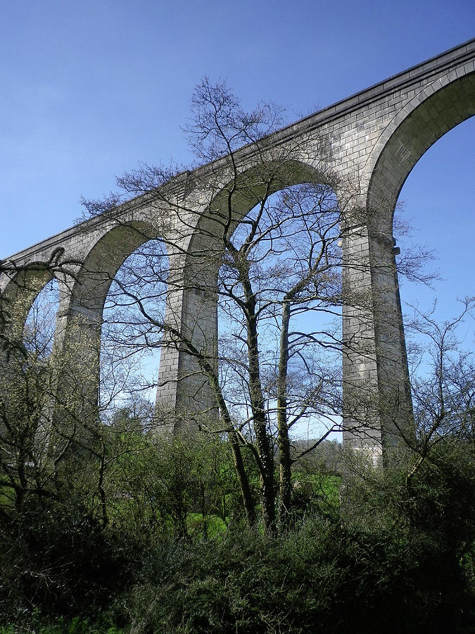 Calstock Viaduct Arches Through Trees Devon and Cornwall Border by Richard Brookes
