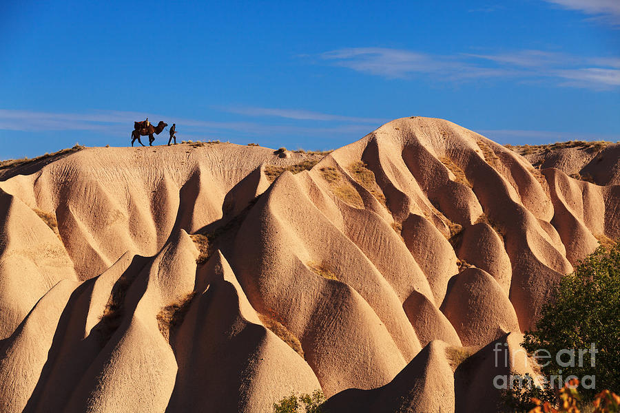 Kapadokya Photograph - Camel And The Cameleer On The Rock by Yavuz Sariyildiz