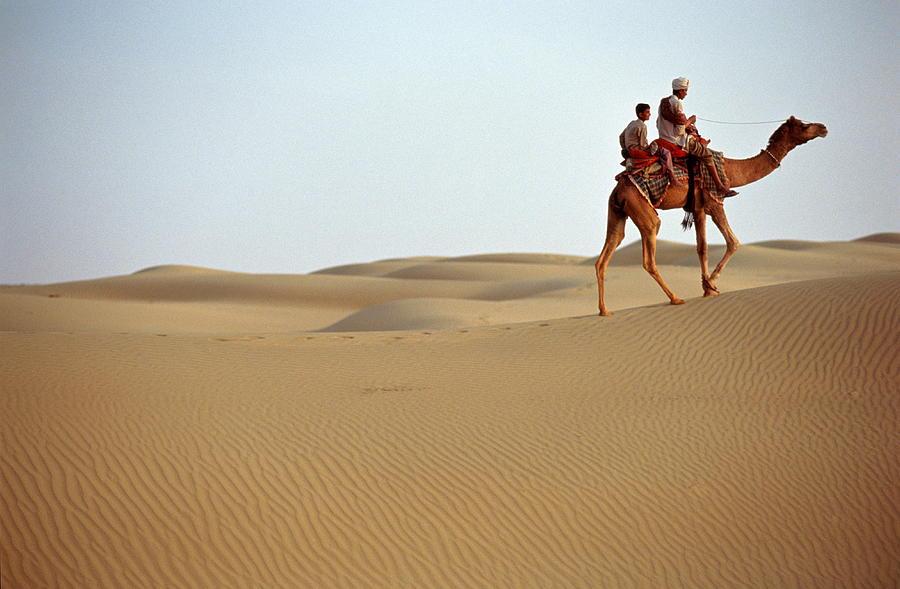 Camel Caravan,rajasthan,india Photograph by Chris Noble