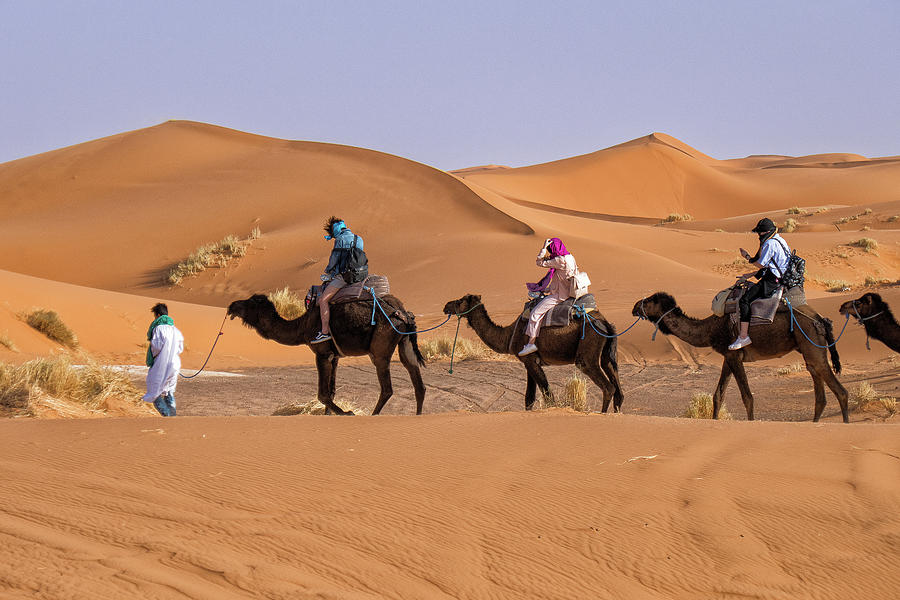 Camel Trek in the Sahara by Photos By Pharos