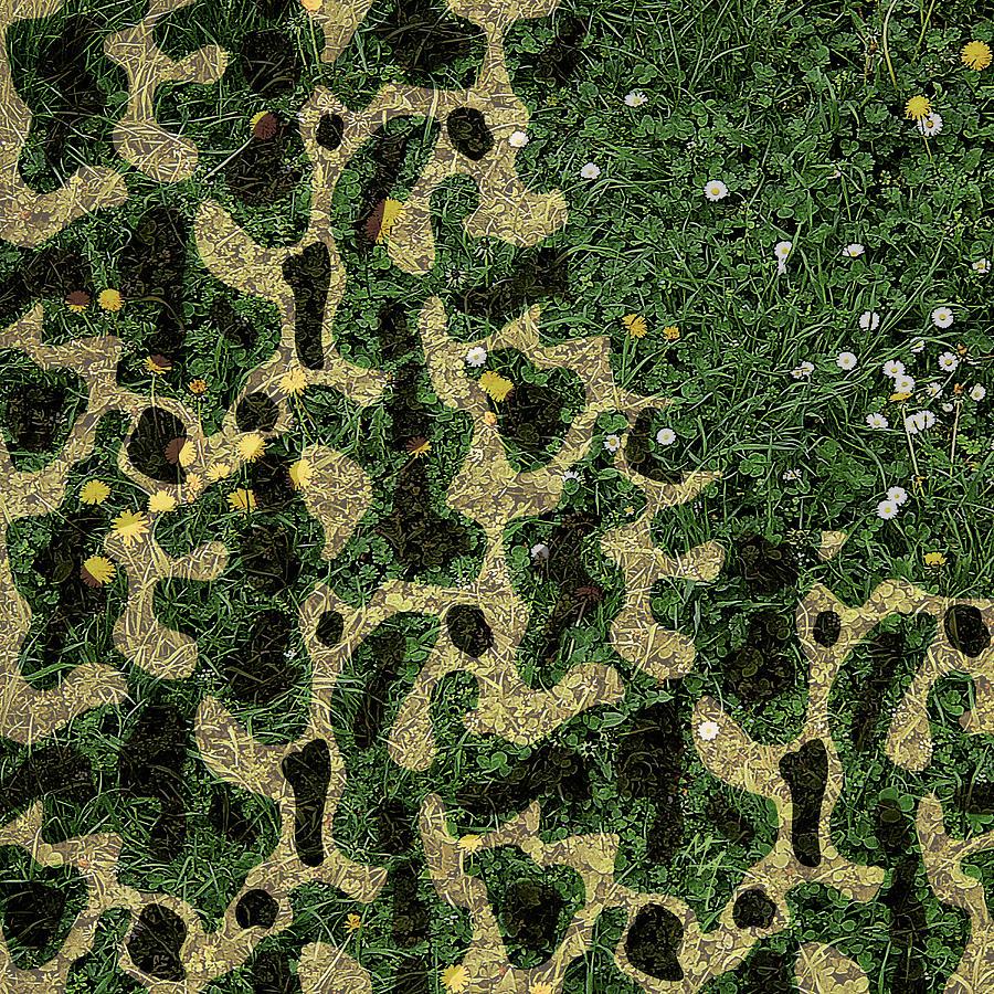 Camouflage by Attila Meszlenyi