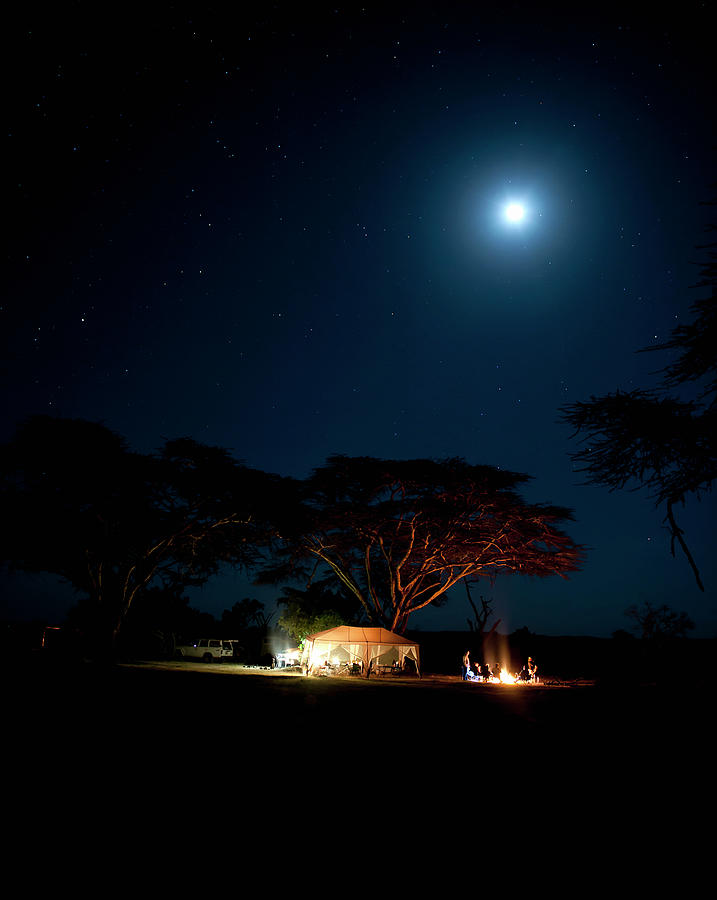 Camping Under Fever Tree And Full Moon Photograph by Mike D. Kock