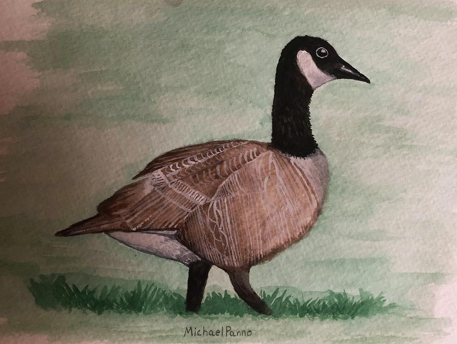 Animals Painting - Canada Goose by Michael Panno