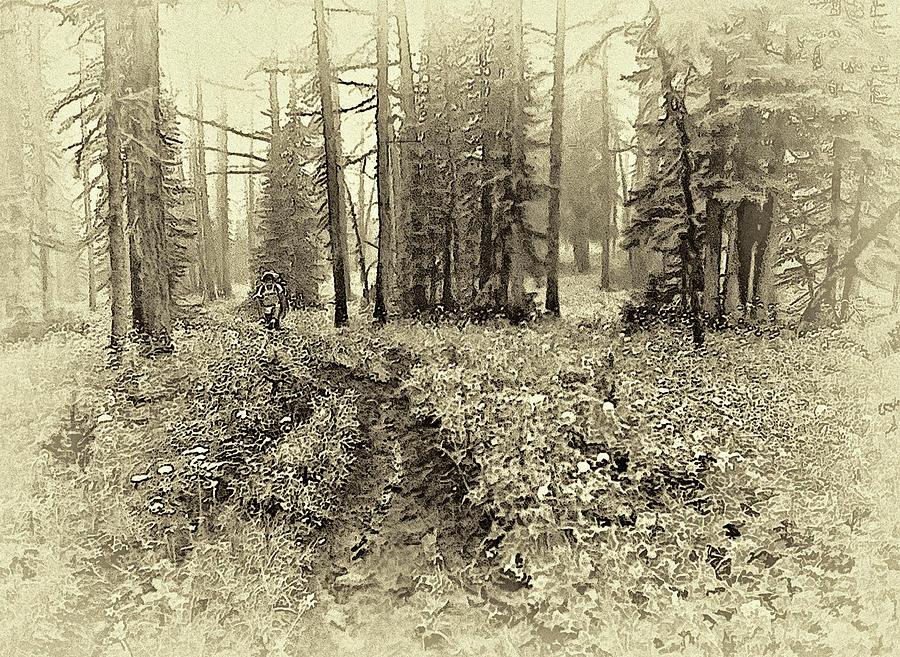 Canadas Great Divide Trail - Sepia Photograph
