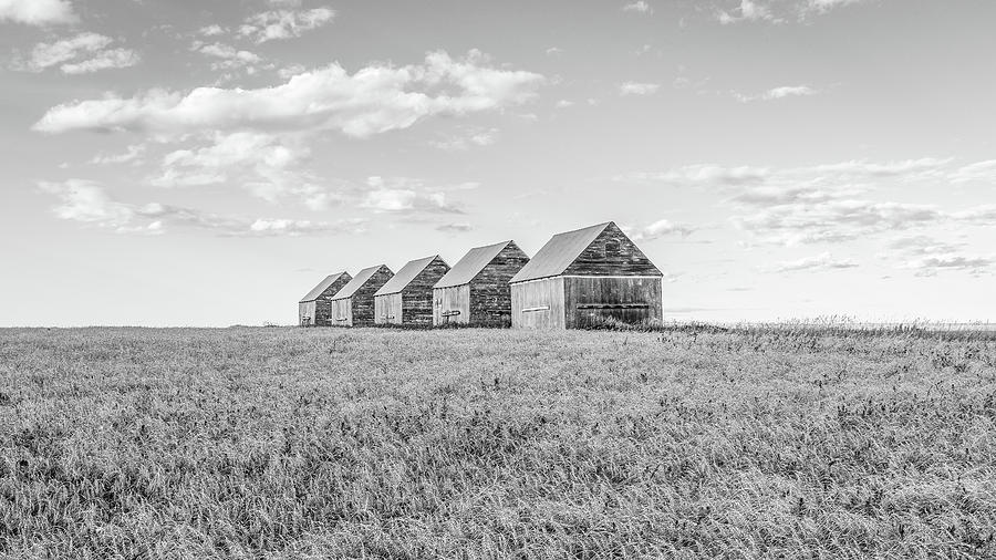 Landscape Photograph - Canadian Prairies by Hamish Mitchell