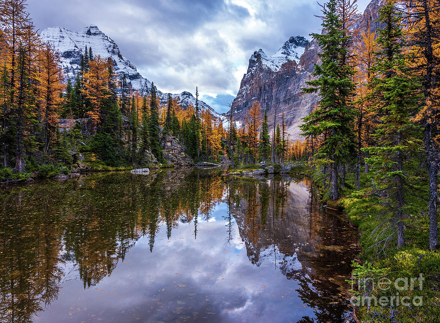 Canadian Rockies Autumns Splendor Reflected by Mike Reid