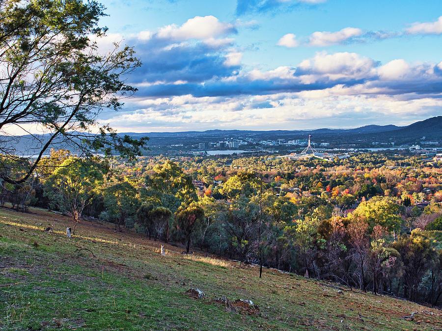 Canberra Autumn 2 - Australia by Steven Ralser