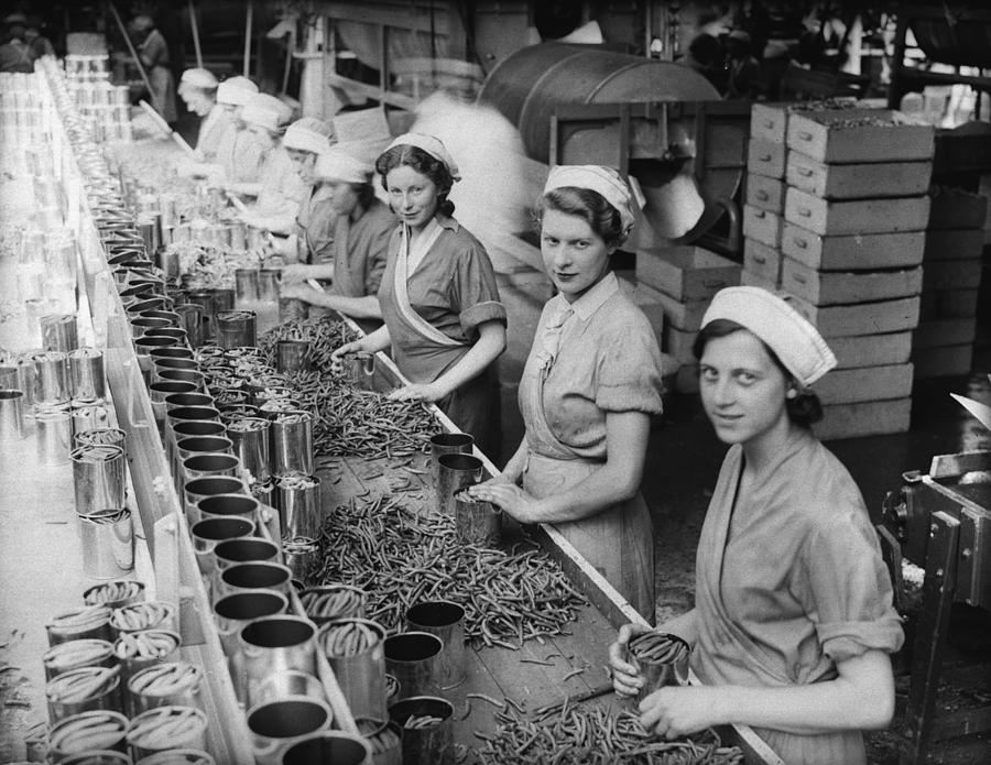 People Photograph - Canning Beans by Fox Photos
