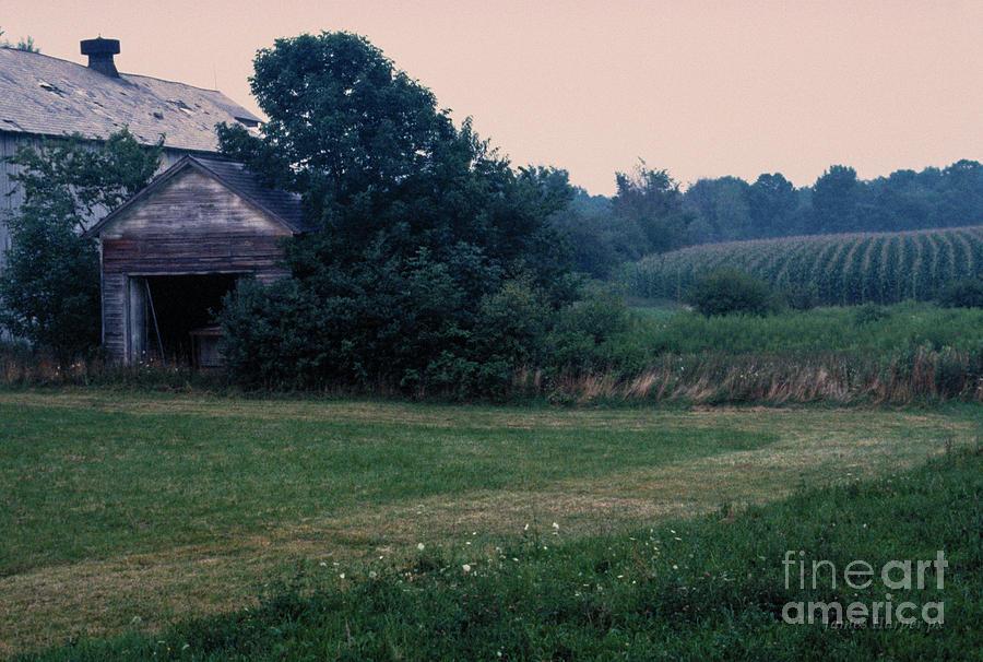 Canon Road Farm by James Harper