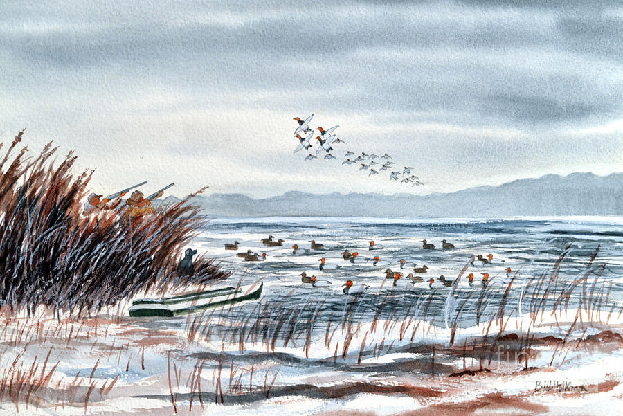 Canvasback Duck Hunting Painting