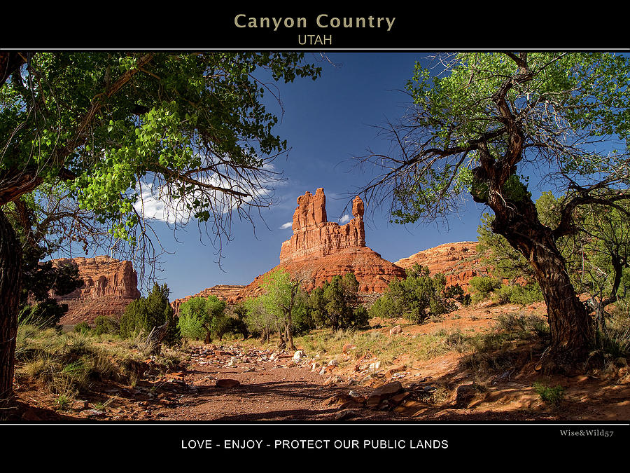 Canyon Country by WiseWild57