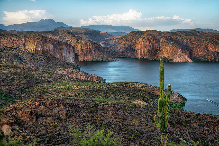 Canyon Lake Four Peaks Saguaro Overlook by Dave Dilli