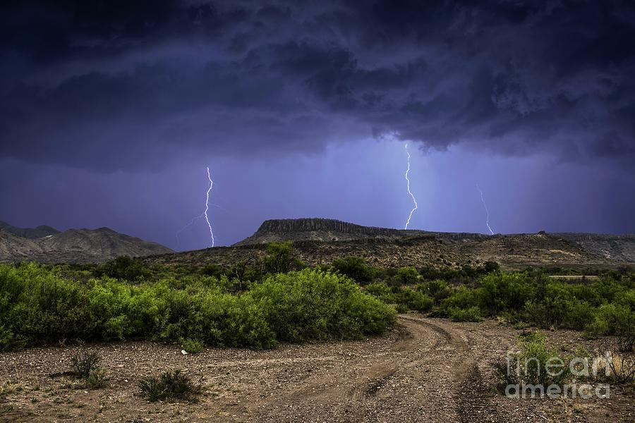 Canyon Lightning Photograph by Francis Lavigne-Theriault