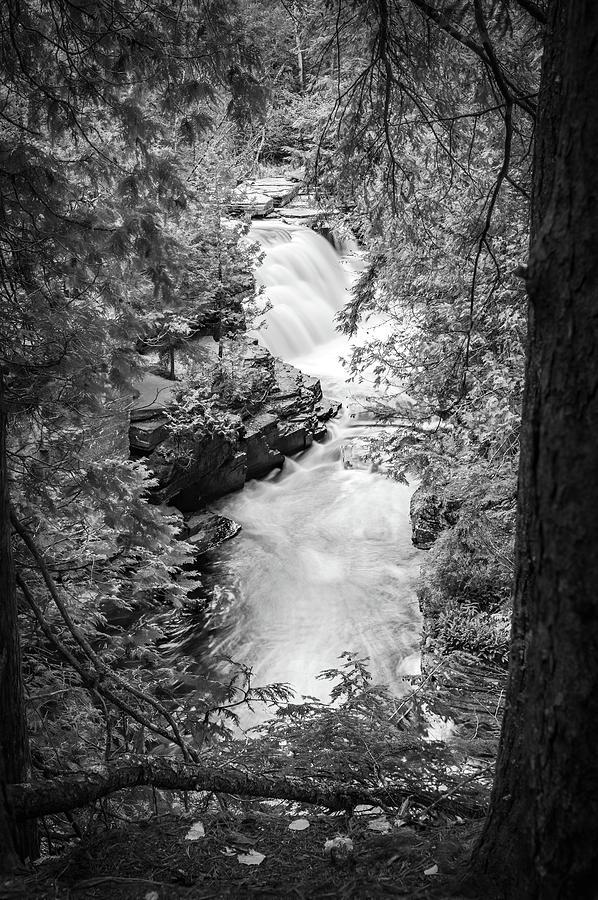 Canyon Monotone by David Heilman
