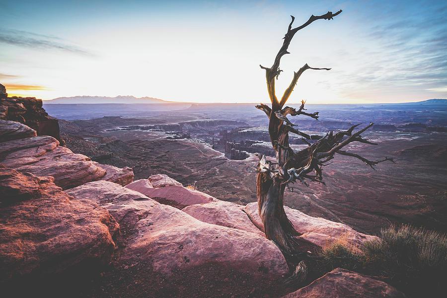 canyonland national park 5 by Mati Krimerman