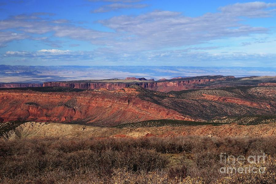 Canyons of Utah by Marcia Lee Jones