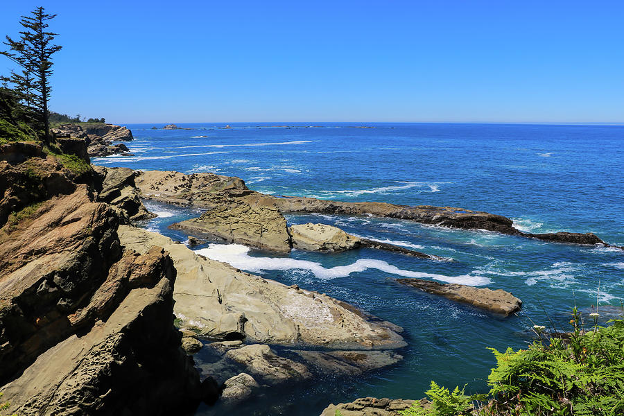 Cape Arago Cliffs, Oregon by Dawn Richards
