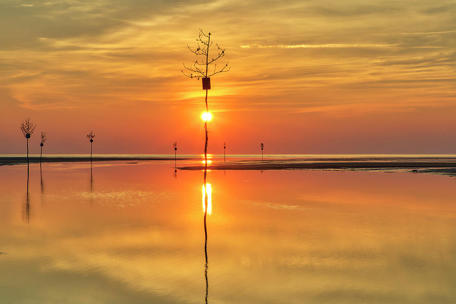 Cape Cod Sunburst by Juergen Roth