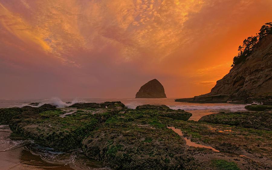 Cape Kiwanda 2 by Thomas Hall