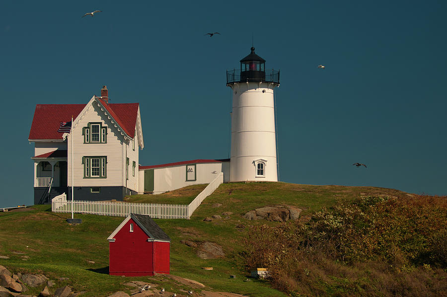 Cape Neddick - Nubble Light by Paul Mangold