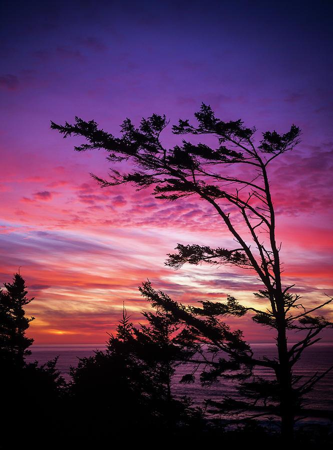 Cape Perpetua Sunset by Robert Potts