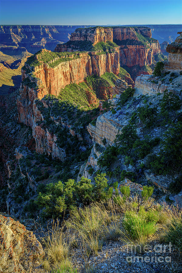 America Photograph - Cape Royal by Inge Johnsson