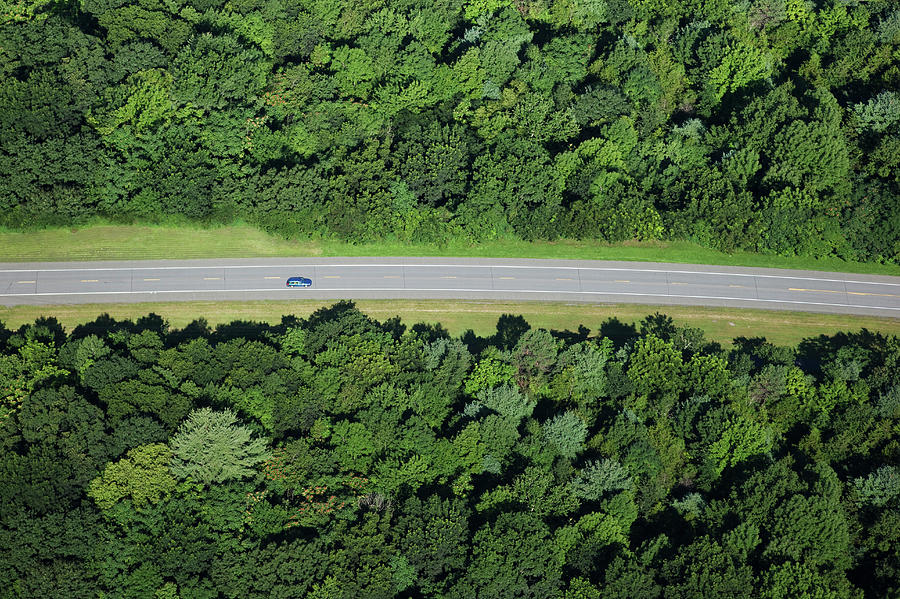 Car On Road Through Forest Photograph by Thomas Jackson