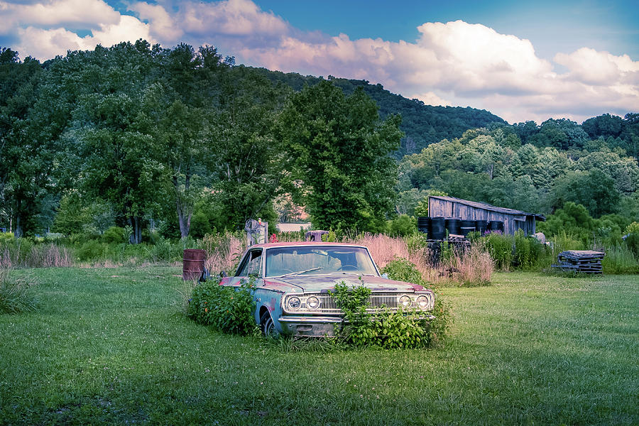 car by Rose Benson