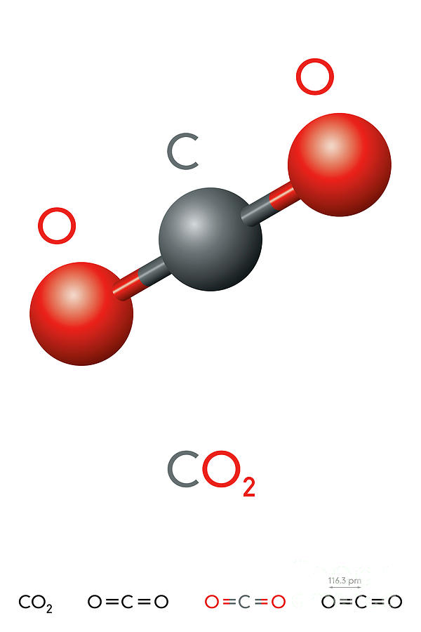 whats the formula for carbon dioxide