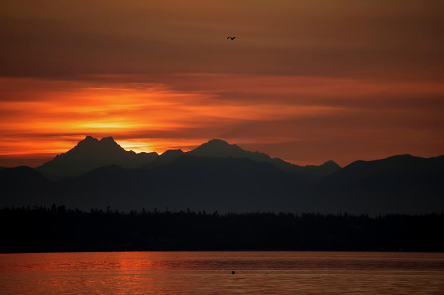 Olympic Mountains Photograph - Cardboard Mountains by Tom Trimbath