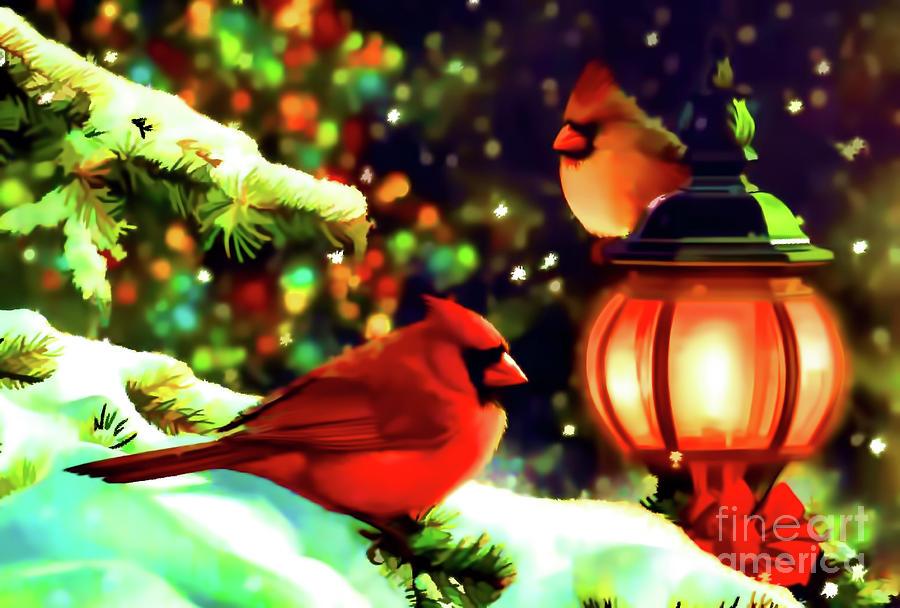 Cardinals At Christmas by D Hackett