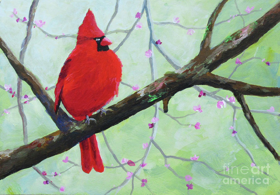 Cardinal on Branch by Anne Marie Brown