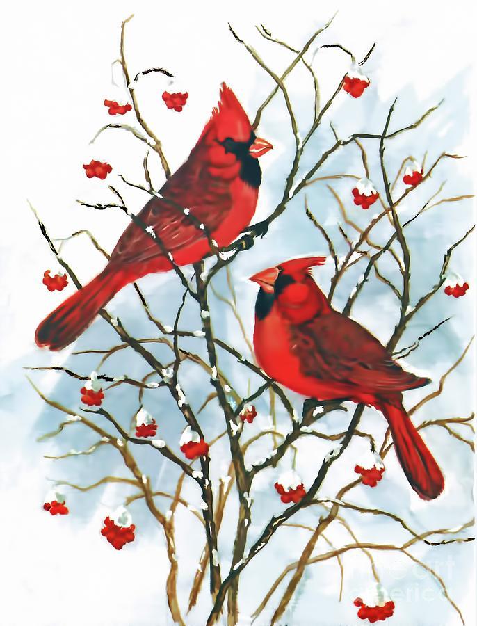 Cardinals In Winter by D Hackett
