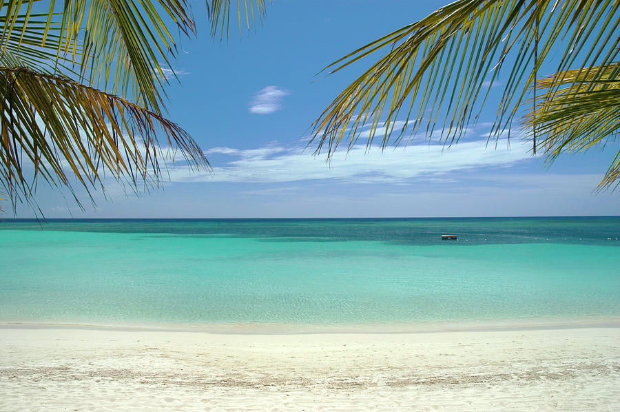Caribbean Sea And White Sand Beach Photograph by Digi guru