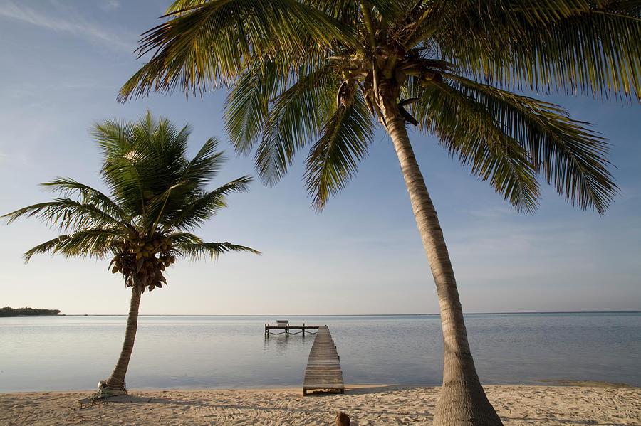 Caribbean Sea, Cayman Islands, Little Photograph by Paul Souders