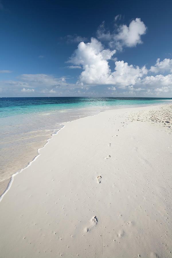 Scenic Photograph - Caribbean White Sand Beach by Stevegeer