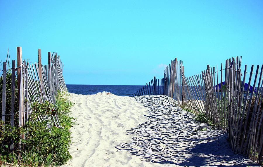 Carolina Beachscape by Cynthia Guinn
