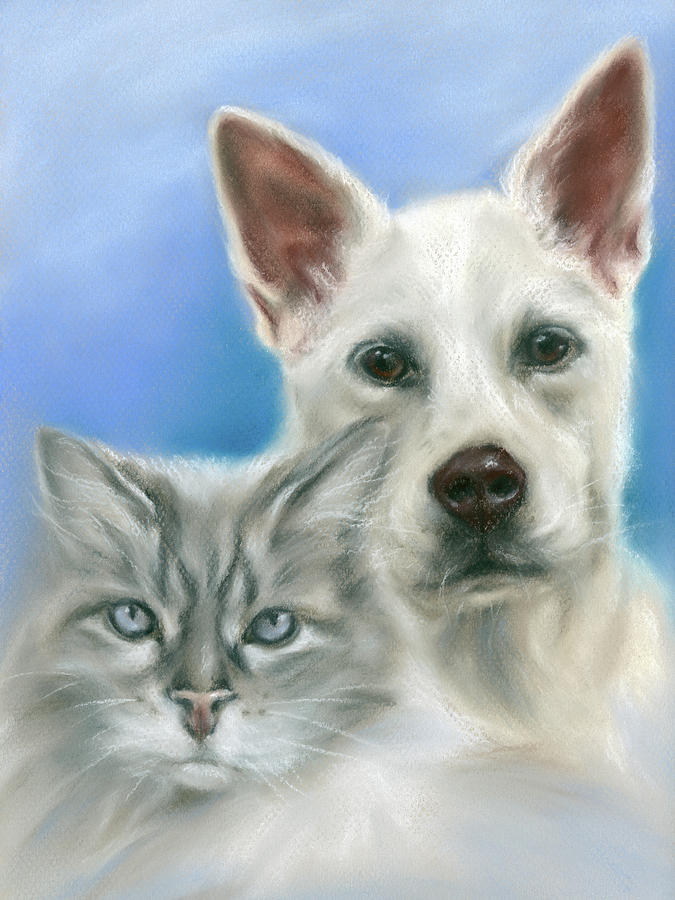 Carolina Dog and Longhaired Gray Cat by MM Anderson